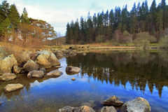 Foot bridge and pine trees reflected in Llyn Mymbyr Capel Curig Snowdonia. Wales Royalty Free Stock Photos
