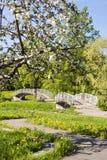Foot bridges through river in park Stock Images