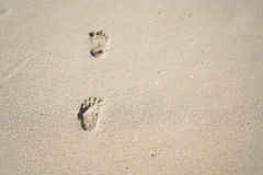 Foot. Children`s footprint on the sand Stock Photos