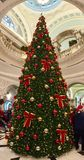 20 foot Christmas Tree, in the Hall!. The 20ft Christmas tree in the City Hall, Belfast, Northern Ireland Royalty Free Stock Photo