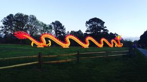 30 Foot Dragon. Light up dragon Lantern Asia Asian good luck Stock Image
