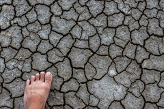 Foot dry ground. Stock Photos
