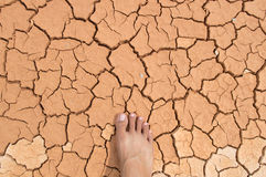 Foot on Dry soil. Dry soil  background  color asian Stock Images