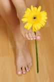 Foot with flower Royalty Free Stock Photography