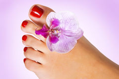 Foot with flower Stock Photos