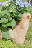 Foot in the flower Royalty Free Stock Photography