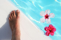 Foot and Flowers Stock Photos