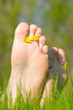 Foot with flowers Stock Photography