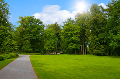Foot footpath in park. On wood border Royalty Free Stock Photo