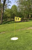 Foot golf course ball cup and flag Royalty Free Stock Image