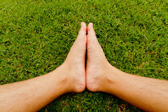 Foot on the grass Stock Photography
