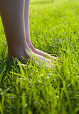 Foot in the grass. Legs on the grass Royalty Free Stock Images