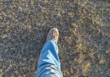 A foot on the grass Royalty Free Stock Photography