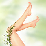 Foot on green Royalty Free Stock Image