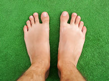 Foot on green grass Stock Image