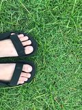 Foot on green grass Stock Photography