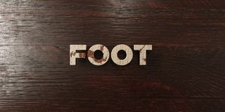 Foot - grungy wooden headline on Maple  - 3D rendered royalty free stock image Stock Photos