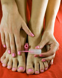 Foot and hand. Pedicured foot and manicured hands Stock Image