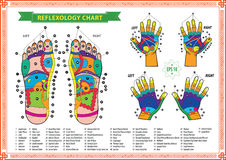 Foot and Hand reflexology chart Royalty Free Stock Image