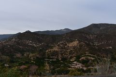 Foot Hills with Lush Fauna in Southern California. Ojai California with rolling foot hills Stock Photography