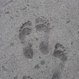 Foot imprints Royalty Free Stock Image