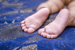Feet of infant baby boy  Royalty Free Stock Images