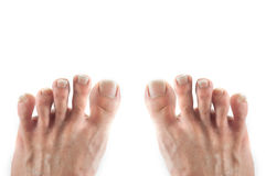 Foot isolate Stock Images