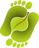 Foot leaf. Illustration art of a foot leaf with isolated background Royalty Free Stock Photos