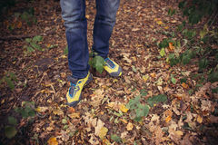 Foot Man walking on fall in the park on autumn leaves. Lifestyle Stock Images
