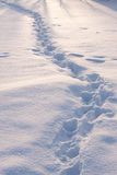 Foot mark in snow Royalty Free Stock Photography