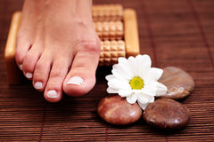 Foot massage Stock Image