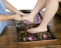 Foot massage at day spa by masseuse. Spa therapy young woman get a massage from masseuse while at a day spa after soaking feet in a floral warm hydrating water Royalty Free Stock Photos