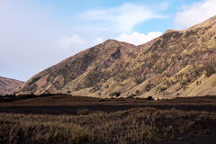 Foot of mountain at the Tengger Semeru National Park in East Java. Royalty Free Stock Images