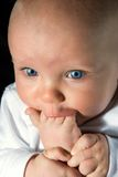Foot in mouth. Closeup of an infant chewing on his foot Stock Photography