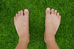Foot over green grass Stock Image