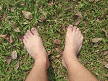 Foot over green grass Royalty Free Stock Images
