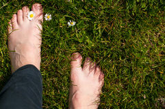 Foot over green grass Royalty Free Stock Photo