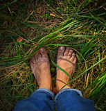 Foot over green grass. Stock Photography