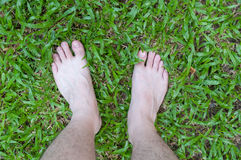 Foot over green grass Stock Photography