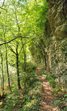 Foot path. In the mountains Royalty Free Stock Images