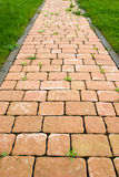 Foot path. Rustic paving, foot path in the garden Stock Images