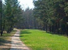 Foot-path Stock Foto's