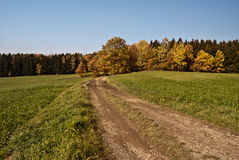 Foot-path in autumn countryside with colourful forest and clear sky Royalty Free Stock Images