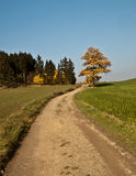 Foot-path in autumn countryside with colourful tree and clear sky Stock Photography