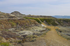 Foot path in Dinosaur Provincial Park Stock Photos