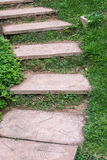 Foot path with grass in garden Royalty Free Stock Image