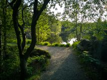 Free Foot Path In The Green Nature Next To A Lake Stock Images - 150177924