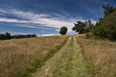 Foot-path on meadow in Javorniky Royalty Free Stock Photos