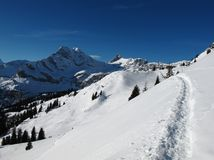 Foot-path in the snow, mountains Royalty Free Stock Photos