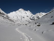 Foot-path to the Annapurna Base Camp Royalty Free Stock Photo